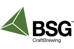 internship-bsg-logo-300